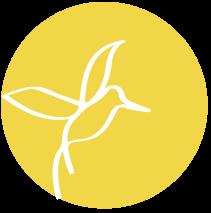 Janina Lücke – Schreibcoaching: kostenloses Impulstreffen